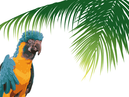 Colorful parrot in the forest with palms Vector