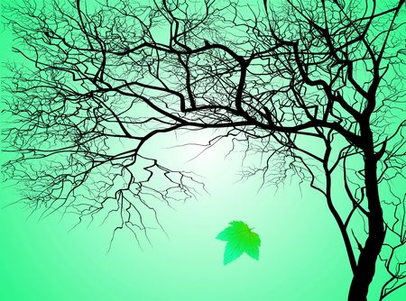 Tree without leaves on an autumn background photo