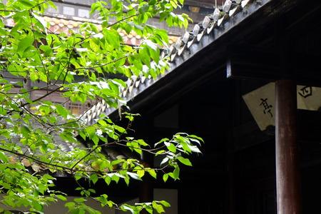 the humanities landscape: Yuelu Academy