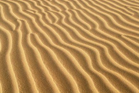oceana: Ridges of sand formed in sand dune located in Oceana California