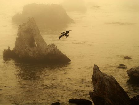 Sepia image of a group of islands off Pismo Beach California with pelican in flight giving it a prehistoric era feel photo