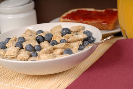 A bowl of wheat cereal with blueberries, toast and orange juice photo