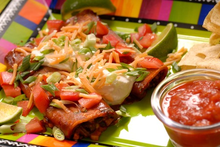 chips and salsa: Two Enchiladas with tortilla chips and salsa Stock Photo