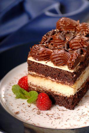 to cake layer: Una torta strato di cioccolato con lamponi, menta e fudge frosting