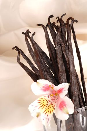 Whole vanilla beans and a flower in a glass