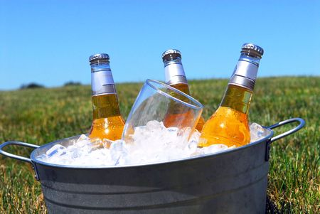 Bucket of chilled beers on ice in an outdoor picnic setting photo