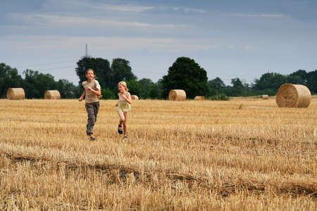 cropland: After harvest