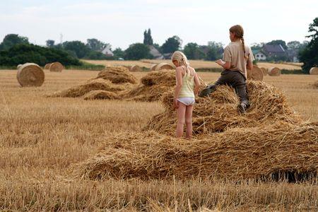 After harvest photo