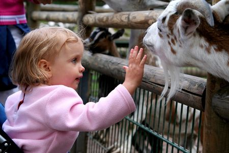 petting: In the zoo Stock Photo