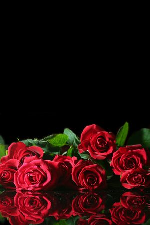 amore: Red rose on a black background Stock Photo