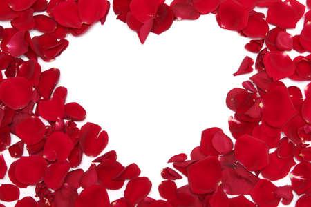 mujer con rosas: Coraz�n de p�talos de rosas rojas sobre fondo blanco