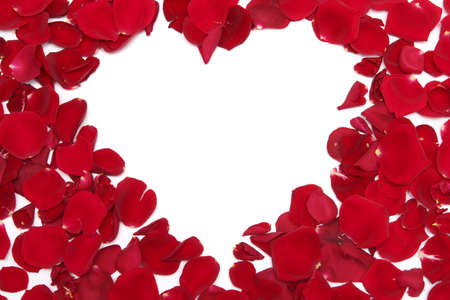 flower petal: Heart made of red rose petals on a white background