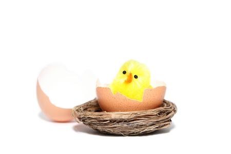 hutch: Yellow easter chicken toys on a white background