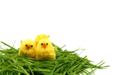 Yellow easter chicken toys on a white background Stock Photo - 794830