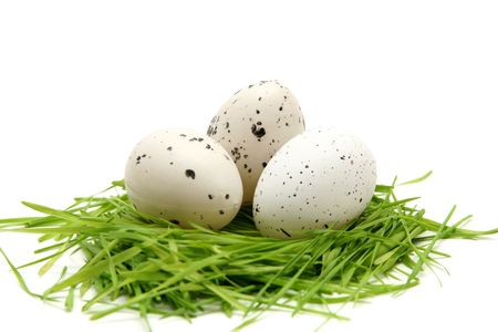 Spotted easter eggs on a white background