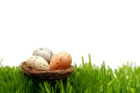 Spotted easter eggs on a white background Stock Photo - 799793