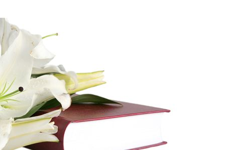Bible and easter lilies on a white background photo