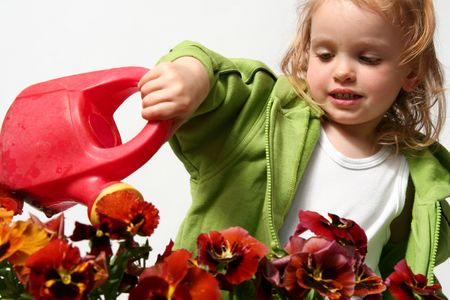 Beautiful little   girl and  red  pansy flowers Stock Photo - 911114