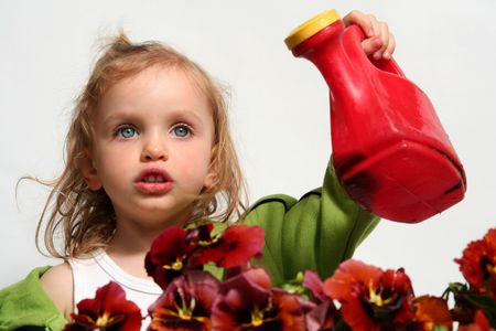 Beautiful little   girl and  red  pansy flowers photo