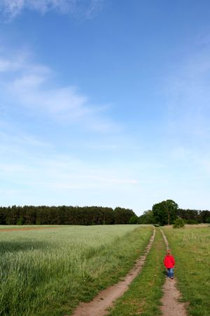 Little  in red walking in the green fields Stock Photo - 1010982