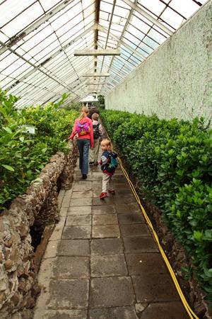 rucksacks: Children with rucksacks visiting big green greenhouse