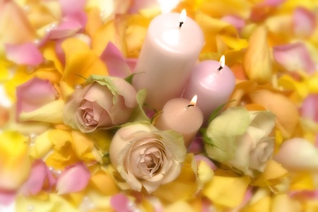 rosas naranjas: Velas rosadas en backdround de pétalos de rosa
