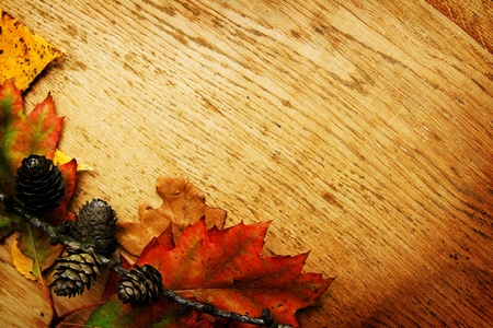 Colorful autumnal leaves lying on a wooden board photo