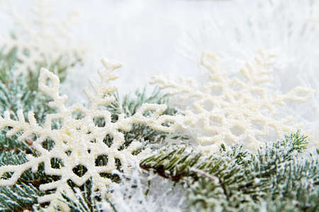 Christmas background made of spruce branch and snowflakes Stock Photo - 16134195