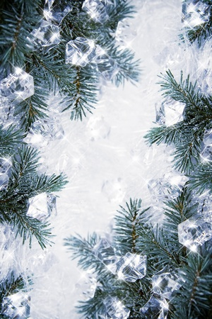 agleam: Winter backround with spruce branches and cubes of ice