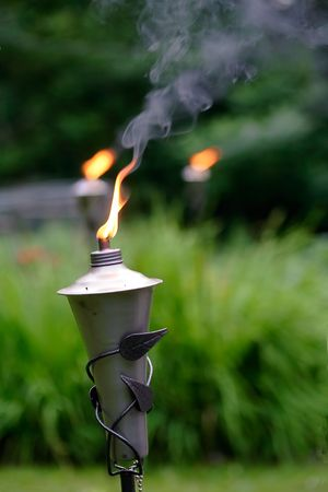 Mosquito repellent burning in the garden in the evening photo