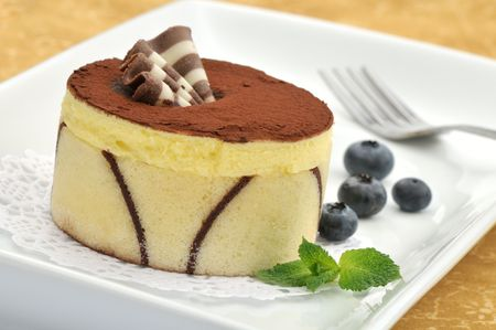 Cocoa and vanilla cake decorated with chocolate fan on a white plate with mint and blueberries photo