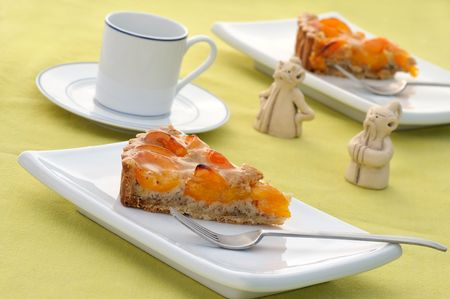 Apricot tart slices on white plate in natural light photo