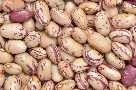 pinto: Close-up of pink striped beans to use as background