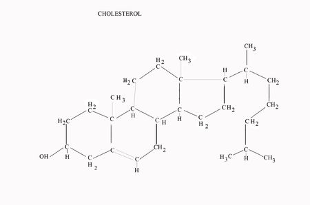 structure: the chemical structure of cholesterol formula