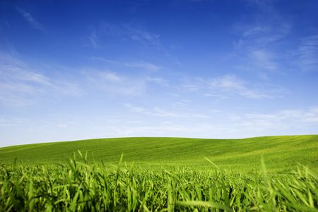 Beautiful green meadow with a bright blue sky photo