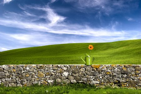 Green watering can over a stone wall on a beautiful green meadow photo