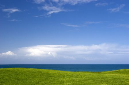 beautiful meadow with Green grass and blue sky Stock Photo - 4237252
