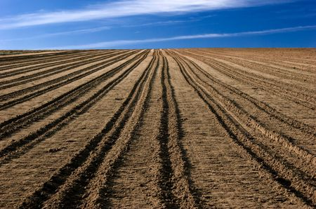 ploughed: ploughed field ready to be cultivated