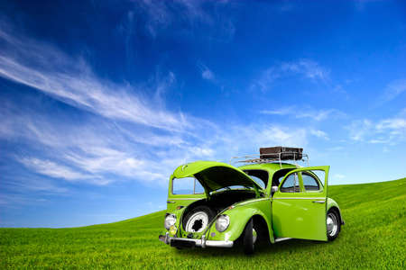 beautiful beetle car with doors open on a green meadow photo