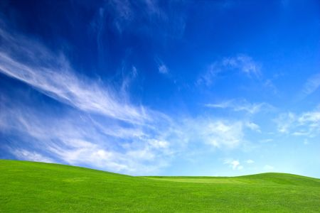 beautiful meadow with Green grass and blue sky photo