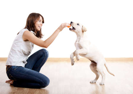 dog toy: Beautiful young girl playing with a nice cute dog Stock Photo