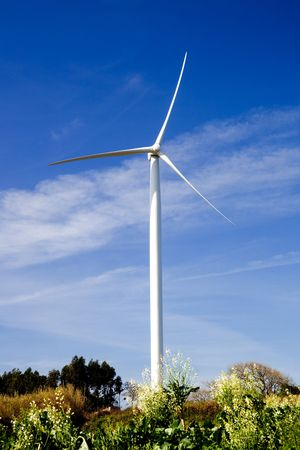 Wind turbine on a beautiful green meadow, energy concept Stock Photo - 6197651