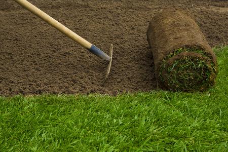 jardineros: Jardinero aplicando rollos de césped en el patio trasero Foto de archivo