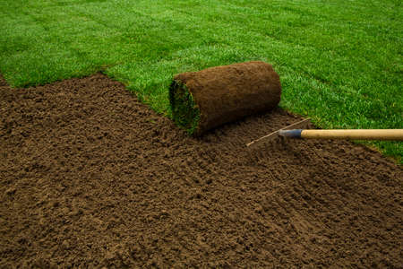 sod: Gardener applying turf rolls in the backyard Stock Photo