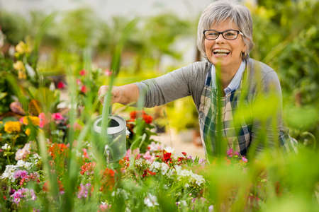 garden: Beautiful mature woman in a garden watering flowers Stock Photo
