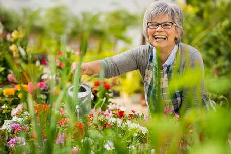regar las plantas: Hermosa mujer madura en un jardín regando flores