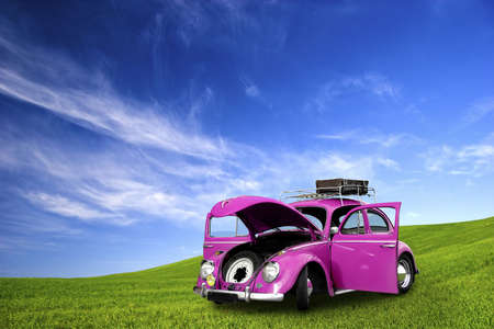 restoring: beautiful beetle car with doors open on a green meadow