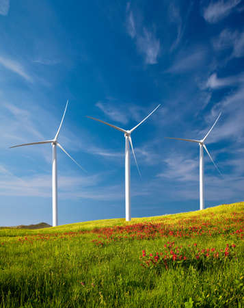 wind turbine: Beautiful green meadow with Wind turbines generating electricity