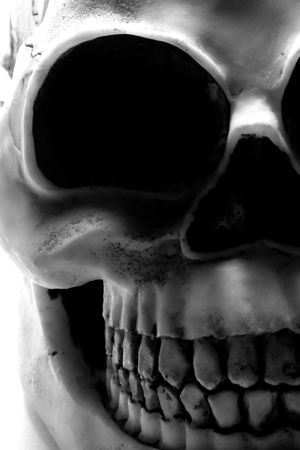 macabre: Black and white close up of a  skull. Stock Photo