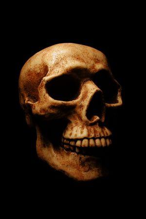 nightmarish: A dramatically lit  skull on a black background.